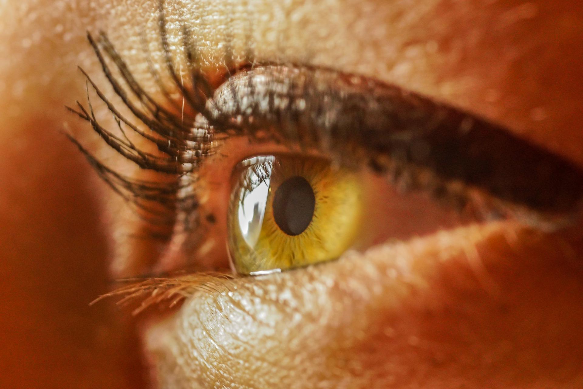 eye-4367141_1920